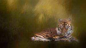 Bilder Tiger Gezeichnet Tiere