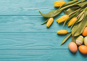 Wallpapers Tulips Easter Egg Wood planks Flowers