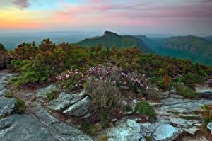 壁纸、、アメリカ合衆国、山、石、低木、Avery North Carolina、自然