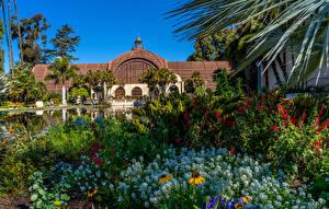 デスクトップの壁紙、、アメリカ合衆国、公園、池、住宅、サンディエゴ、低木、Balboa Park、自然