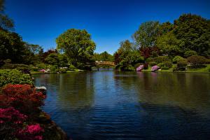 Hintergrundbilder Vereinigte Staaten Park Flusse Brücken Strauch Bäume Missouri Botanical Garden