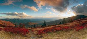 Bilder Vereinigte Staaten Landschaftsfotografie Acker Hügel Strauch Avery North Carolina