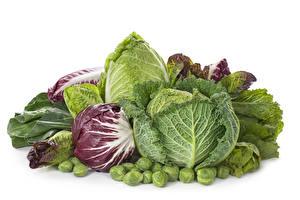 Hintergrundbilder Gemüse Kohl Weißer hintergrund Lebensmittel