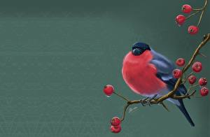 Hintergrundbilder Vögel Gimpel Eberesche Gezeichnet Ast Svetlana Antonova Tiere