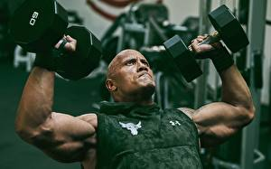 Images Bodybuilding Dwayne Johnson Men Hands Muscle Dumbbell Bald
