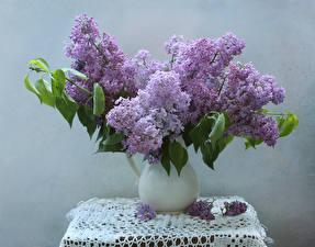 Photo Bouquets Syringa Tablecloth Vase Flowers