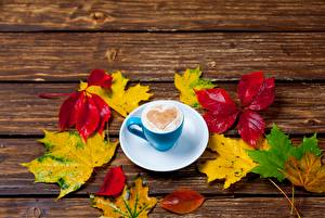 Fotos Kaffee Cappuccino Herz Tasse Untertasse Blattwerk Ahorne das Essen