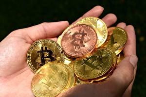 Image Coins Money Bitcoin Closeup Hands Gold color