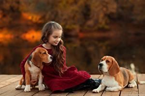 Image Dog Little girls Sit Beagle Brown haired Ekaterina Borisova child Animals