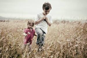 Bilder Felder Jungen Zwei kind
