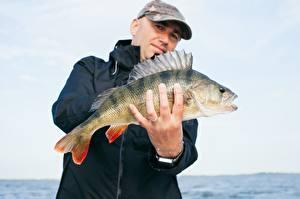 Photo Fingers Man Fish Fishing Hands Ring Baseball cap Perch animal