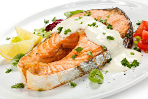 Pictures Fish - Food Salmon Cream Food
