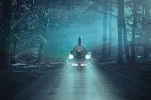 Fotos Wälder Eisenbahn Züge Bäume Schienen Nebel