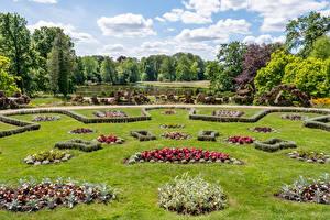 デスクトップの壁紙、、ドイツ、公園、池、芝、デザイン、Wiesenburg Castle Park、自然