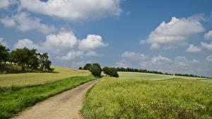 Picture Grasslands Roads Summer Fields Grass Clouds Nature