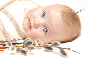Wallpapers Baby Glance Face Children