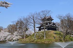 Papel de Parede Desktop Japão Castelo Parque árvores Takada Castle, Niigata Cidades