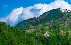 Pictures Japan Mountains Forests Nature