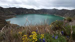 Bilder See Ecuador Gras Vulkan Quilotoa