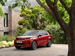 Wallpapers Land Rover Red Metallic Hybrid vehicle SUV 2019 Discovery Sport D180 HSE R-Dynamic Worldwide Cars pictures images