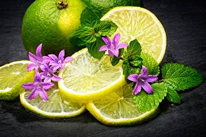 Photo Lemons Foliage Food