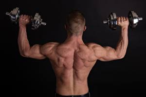 Image Man Black background Dumbbell Human back Hands Back view Muscle Workout athletic