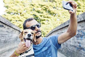 Bilder Mann Hunde Brille Smartphone Retriever Zunge Selfie Beagle