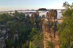 Fotos Gebirge Brücken Schweiz Felsen Nebel Bäume Bastei Cliffs, Saxon Switzerland