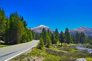Fonds d'écran Montagnes Routes États-Unis Arbres Herbe Montana