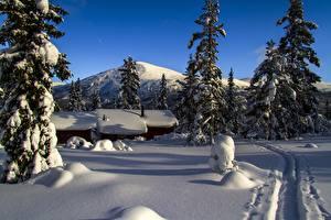 Bilder Berg Winter Gebäude Norwegen Schnee Weg Fichten mountain Storkletten Natur