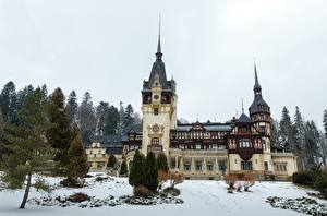 Hintergrundbilder Rumänien Burg Winter Schnee Bäume Peles Castle Städte
