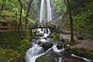 Wallpaper Stones Waterfalls Bridges Creeks Moss Nature