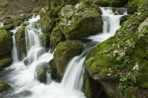 Fotos Steine Wasserfall Laubmoose