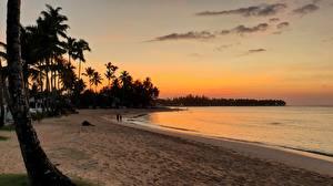 Fotos & Bilder Sonnenaufgänge und Sonnenuntergänge Abend Dominikanische Republik Strand Palmen Las Terrenas Natur