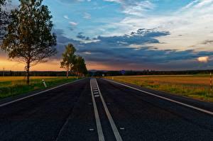 Image Sunrises and sunsets Roads Trees Asphalt