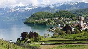 Bilder Schweiz Gebirge See Küste Lake Thun, Canton of Bern Natur