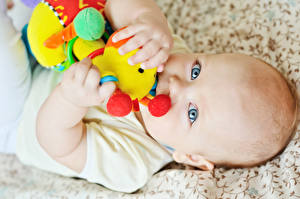 Photo Toys Infants Staring