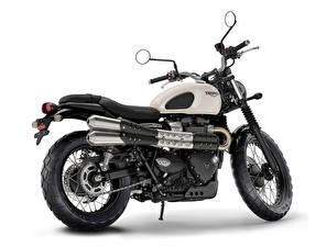 Hintergrundbilder Triumph Motorcycles Ltd. Weißer hintergrund Seitlich 2016-19 Street Scrambler Motorrad