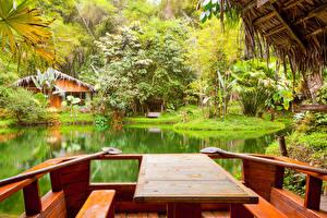 Fotos Tropen Park Gebäude Teich Strauch Tisch Natur