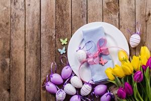 Picture Tulips Easter Boards Eggs Plate Bowknot Flowers