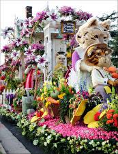 Fotos & Bilder USA Katze Tulpen Rosen Orchideen Kalifornien Design Rose Parade Pasadena Natur