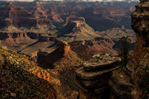 Bilder USA Grand Canyon Park Parks Felsen