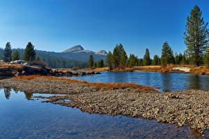 Bilder USA Park Wald See Yosemite