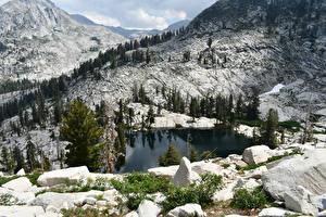 Fotos & Bilder USA Park Gebirge See Steine Landschaftsfotografie Fichten Sequoia National Park Natur