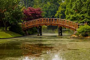 デスクトップの壁紙、、アメリカ合衆国、公園、池、橋、Missouri Botanical Garden、自然