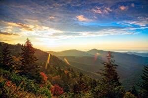 Hintergrundbilder USA Morgendämmerung und Sonnenuntergang Gebirge Wälder Landschaftsfotografie Fichten Transylvania North Carolina Natur
