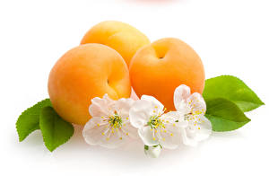 Pictures Apricot White background Three 3