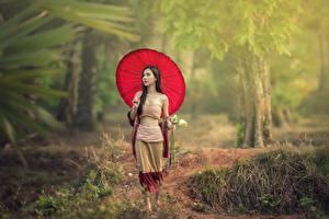 Picture Asian Walk Brunette girl Umbrella Girls