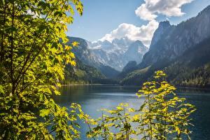 Fonds d'écran Autriche Montagnes Lac Photographie de paysage Branche Falaise Dachstein, Gosausee, Gosau