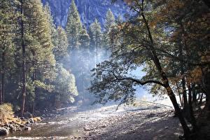 Bilder Herbst Wald Steine USA Park Yosemite Bäume Natur
